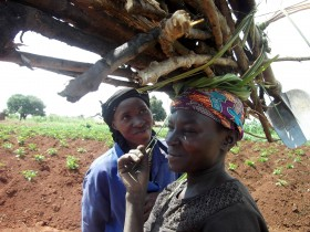 Image: Kiborogya women working