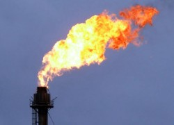 A gas flare