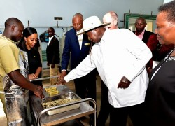 President Yoweri Kaguta Museveni at the launch of African Gold Refinery Limited in Entebbe on Monday